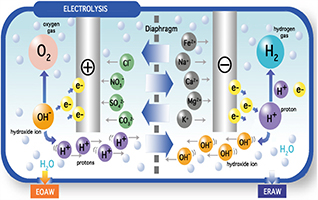What is Electrolyzed Reduced Water ( ERW )