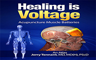 "Healing is Voltage…A new ""Paradigm"""